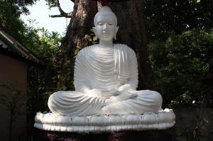 Buddha, Buddhism, Meditation, Religion, Asia, Statue